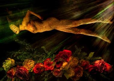 nature morte Laura fleurs 13