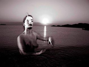 Vous me choisissez parmi les naufragés