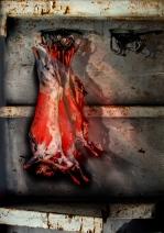 conteiner-viande