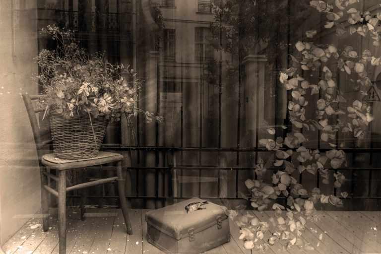 Imagevitrine fleurs.sepia.jpg